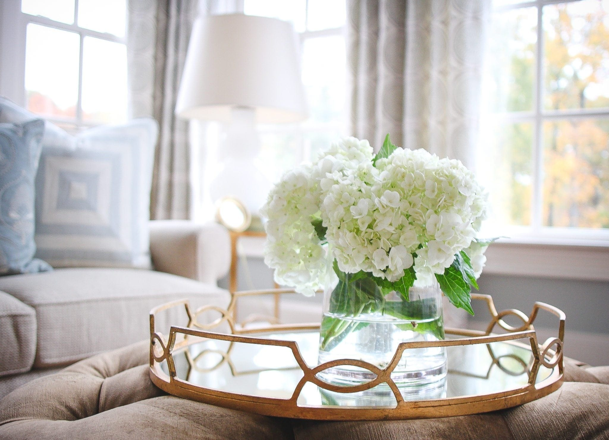 How To Use Hydrangeas Photos Tips And The Meaning