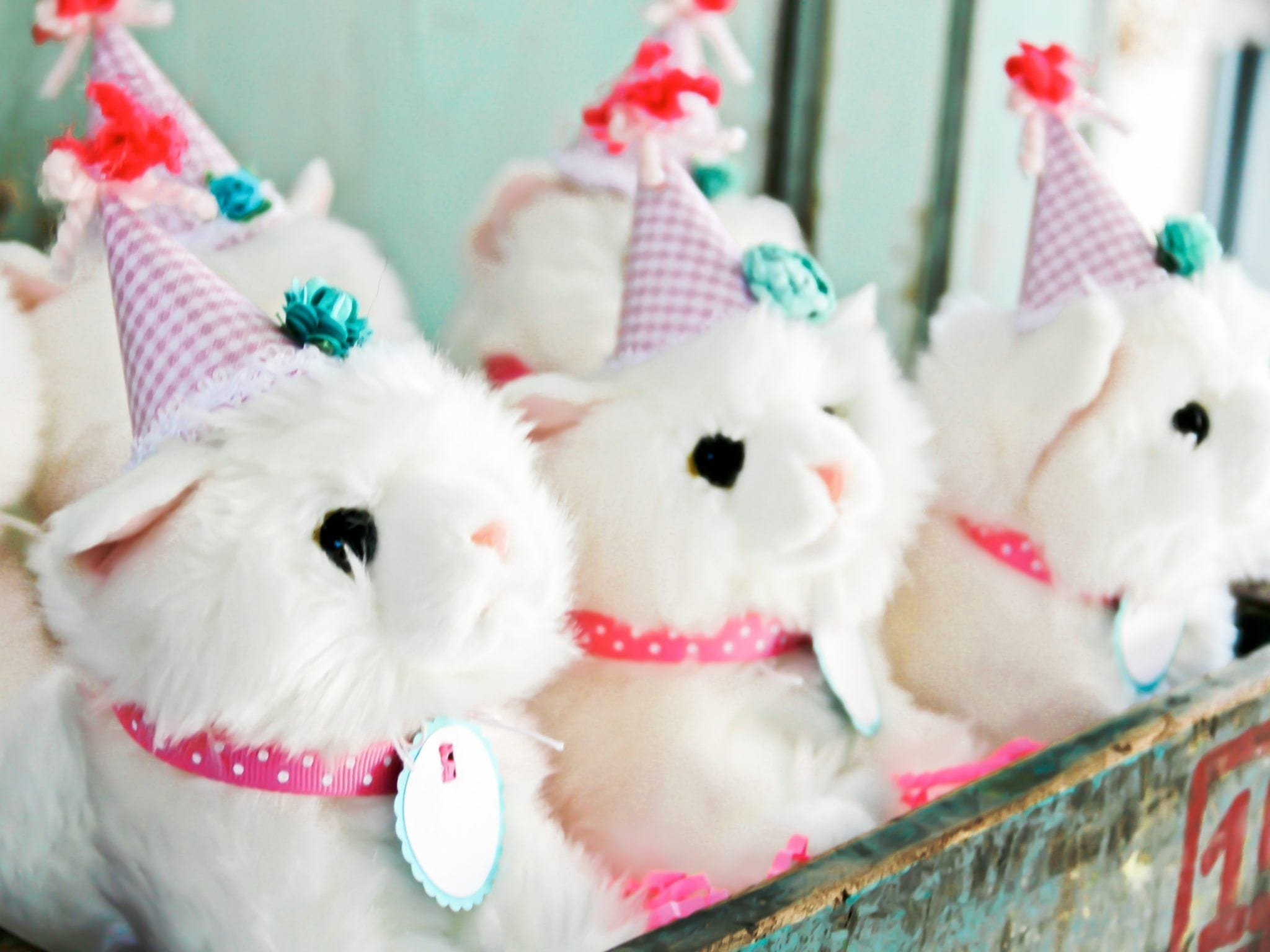 cat birthday party with stuffed white cat animals