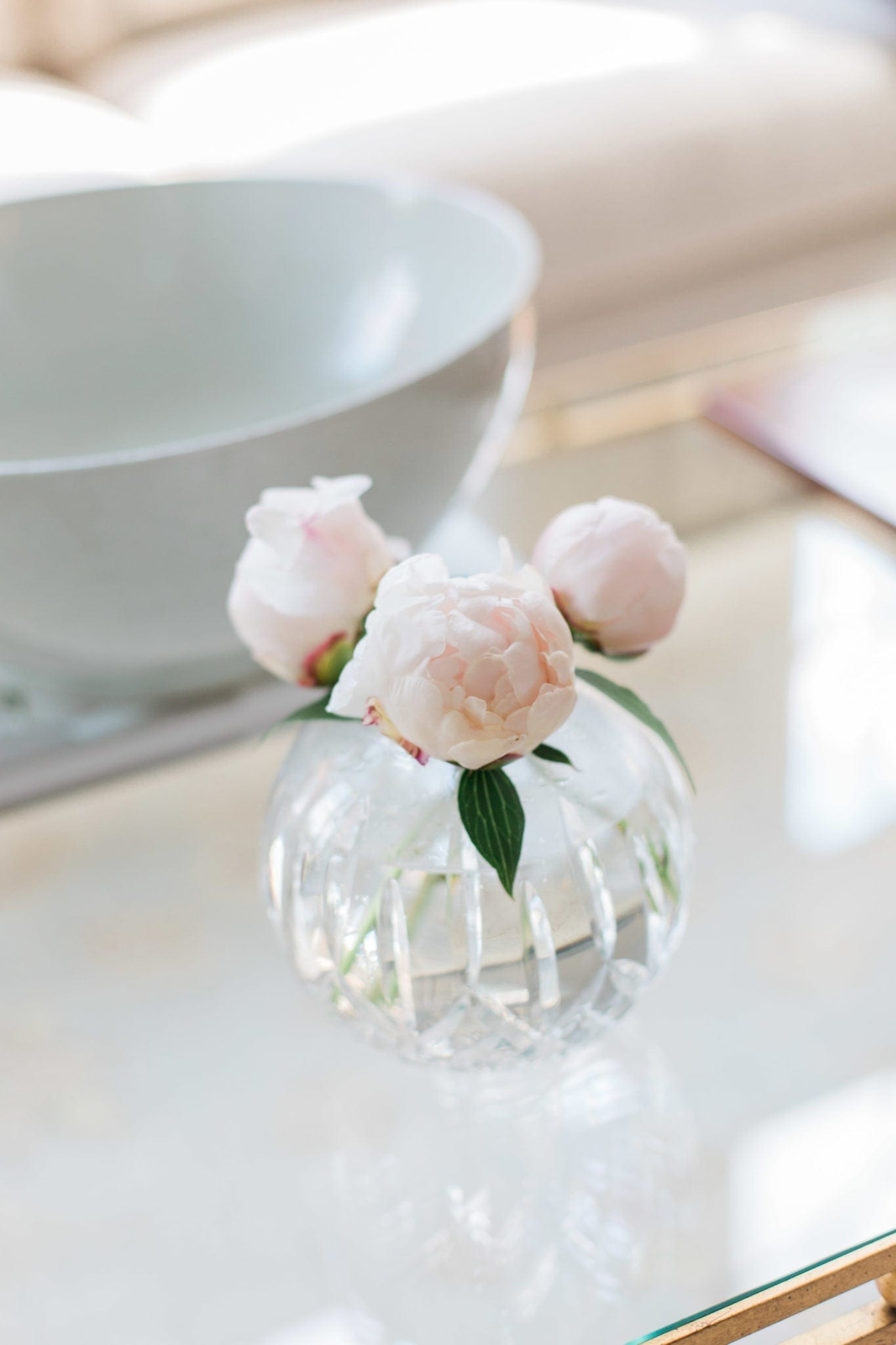 how to preserve peonies